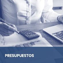 Presupuestos y condiciones técnicas