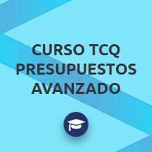 Curso TCQ Presupuestos Avanzado
