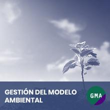 Gestion del modelo ambiental